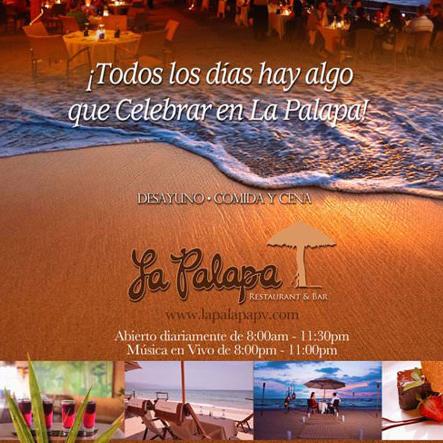 la_palapa_graphicillusion_design