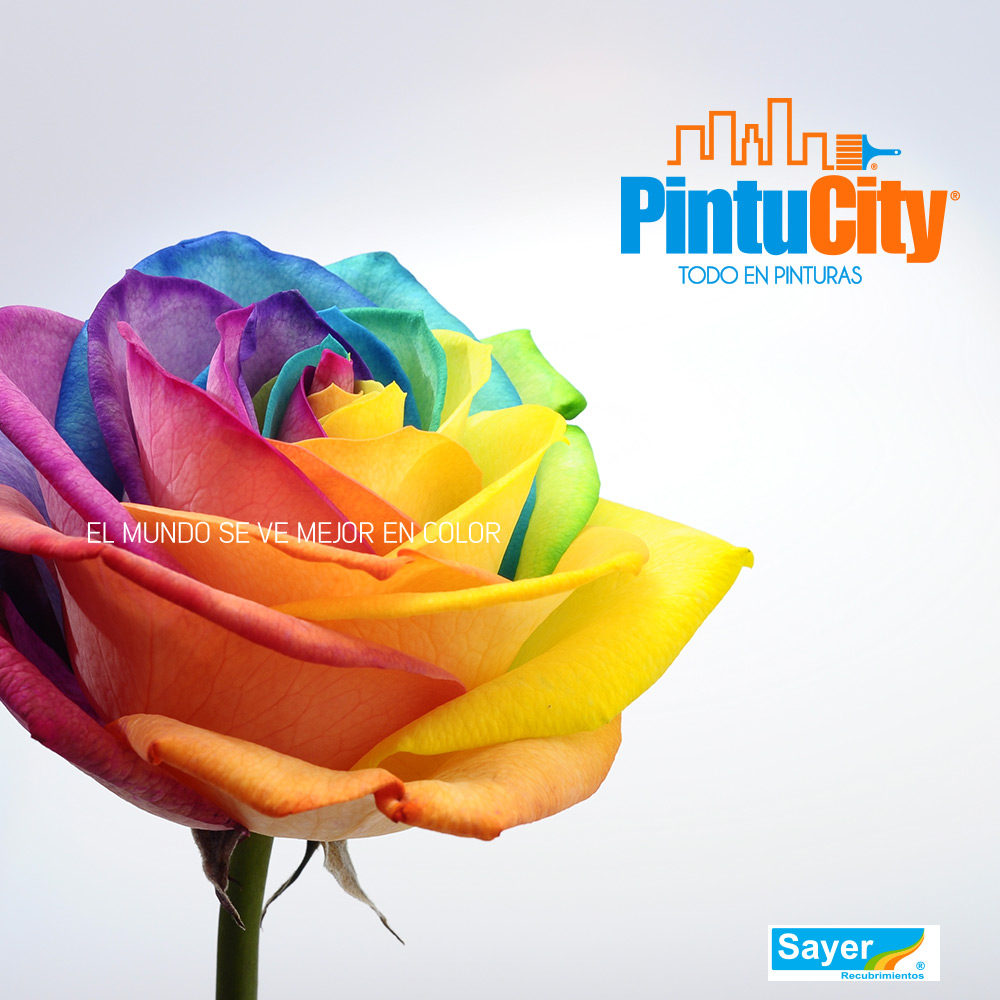Pintu City color1_pintu_city_graphicillusion_design