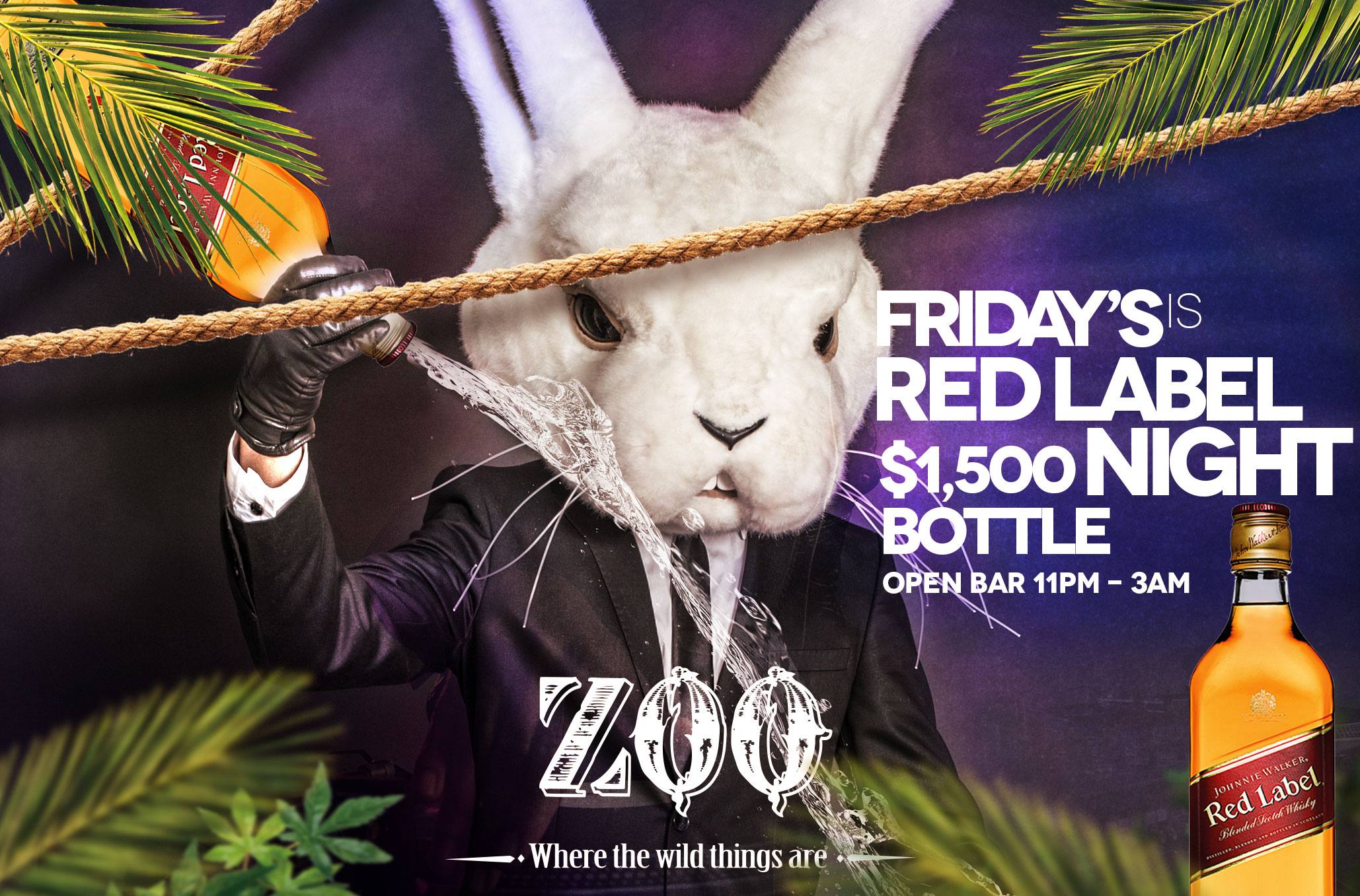 zoo_Red_Label_friday